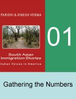 Dinesh Verma - Indian Immigration Stories 01: Gathering the Numbers