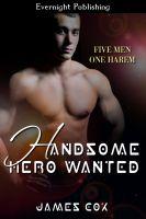 James Cox - Handsome Hero Wanted