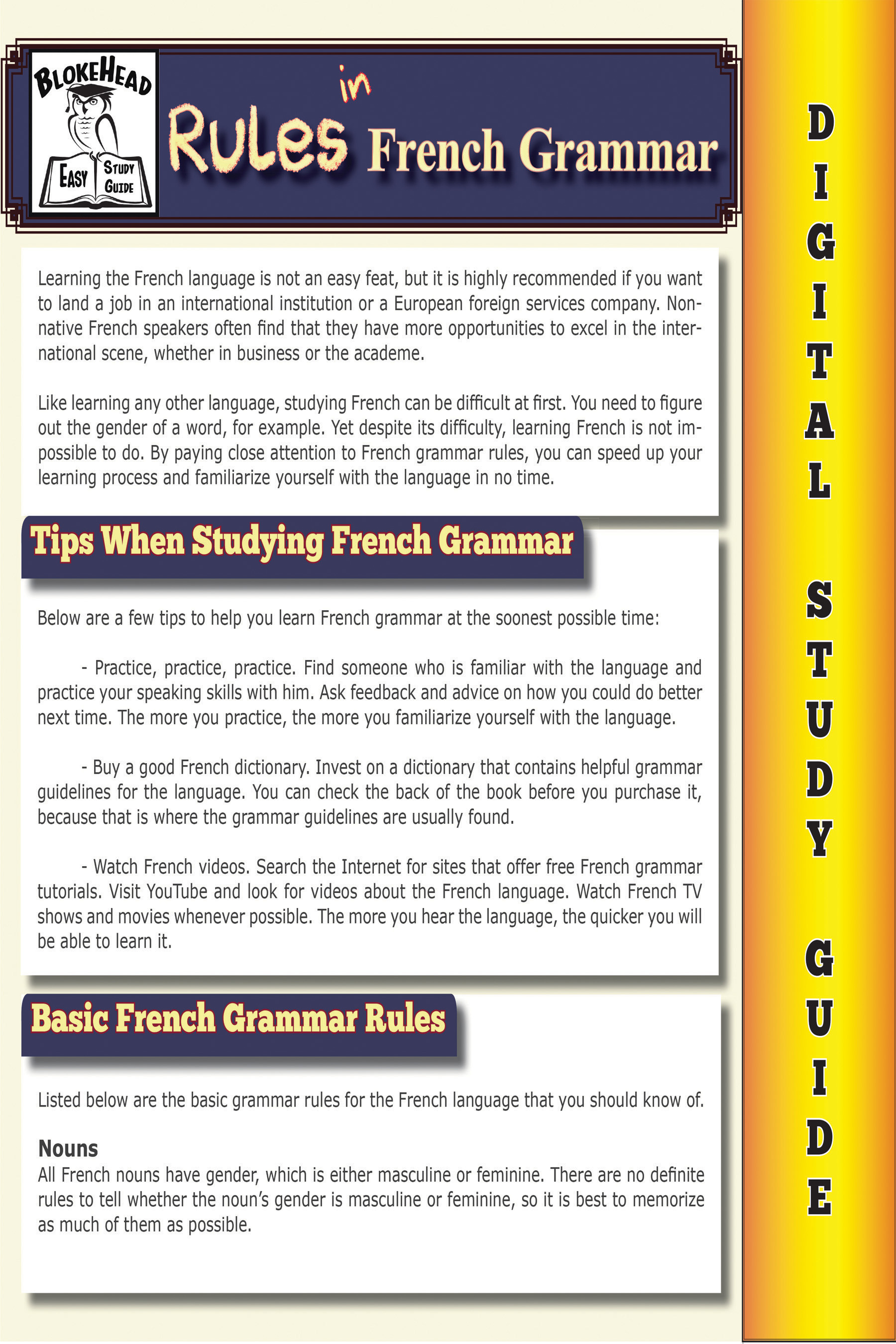 Rules In French Grammar ( Blokehead Easy Study Guide), an Ebook by The  Blokehead