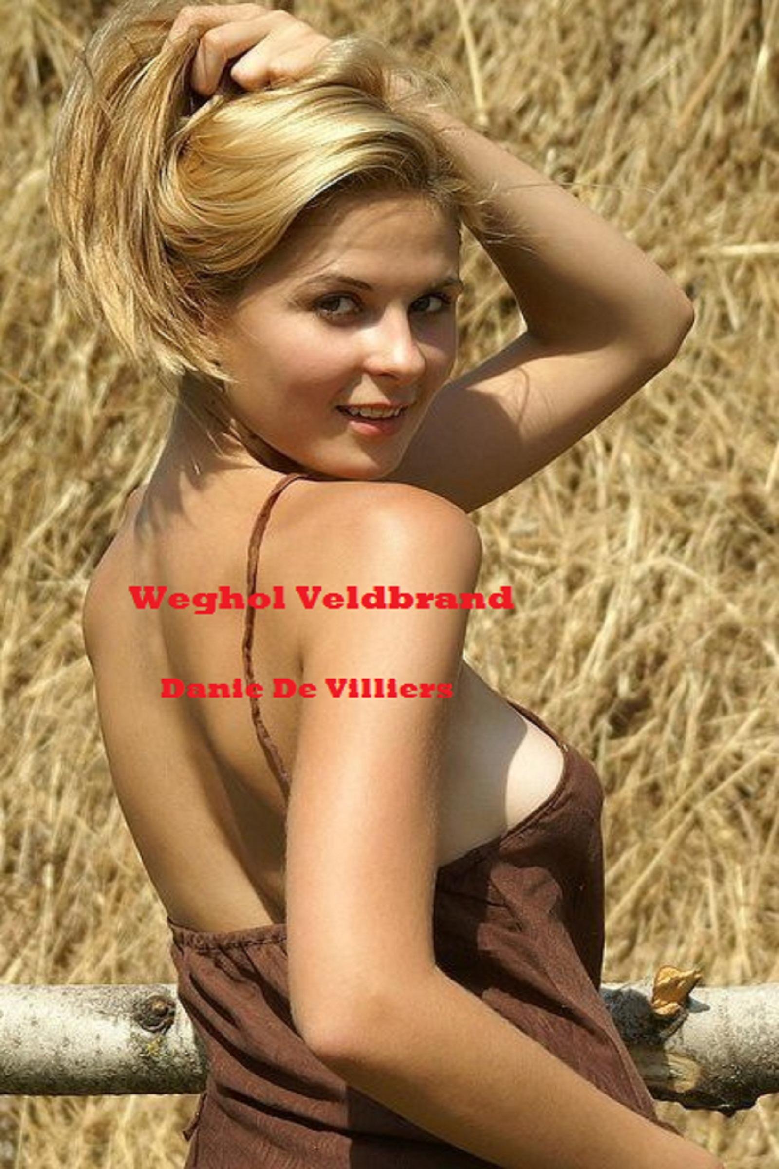 smashwords weghol veldbrand a book by danie de villiers