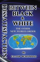 - Dissatisfaction Between Black And White - The Other New World Order