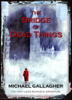 Michael Gallagher - The Bridge of Dead Things (US Edition)