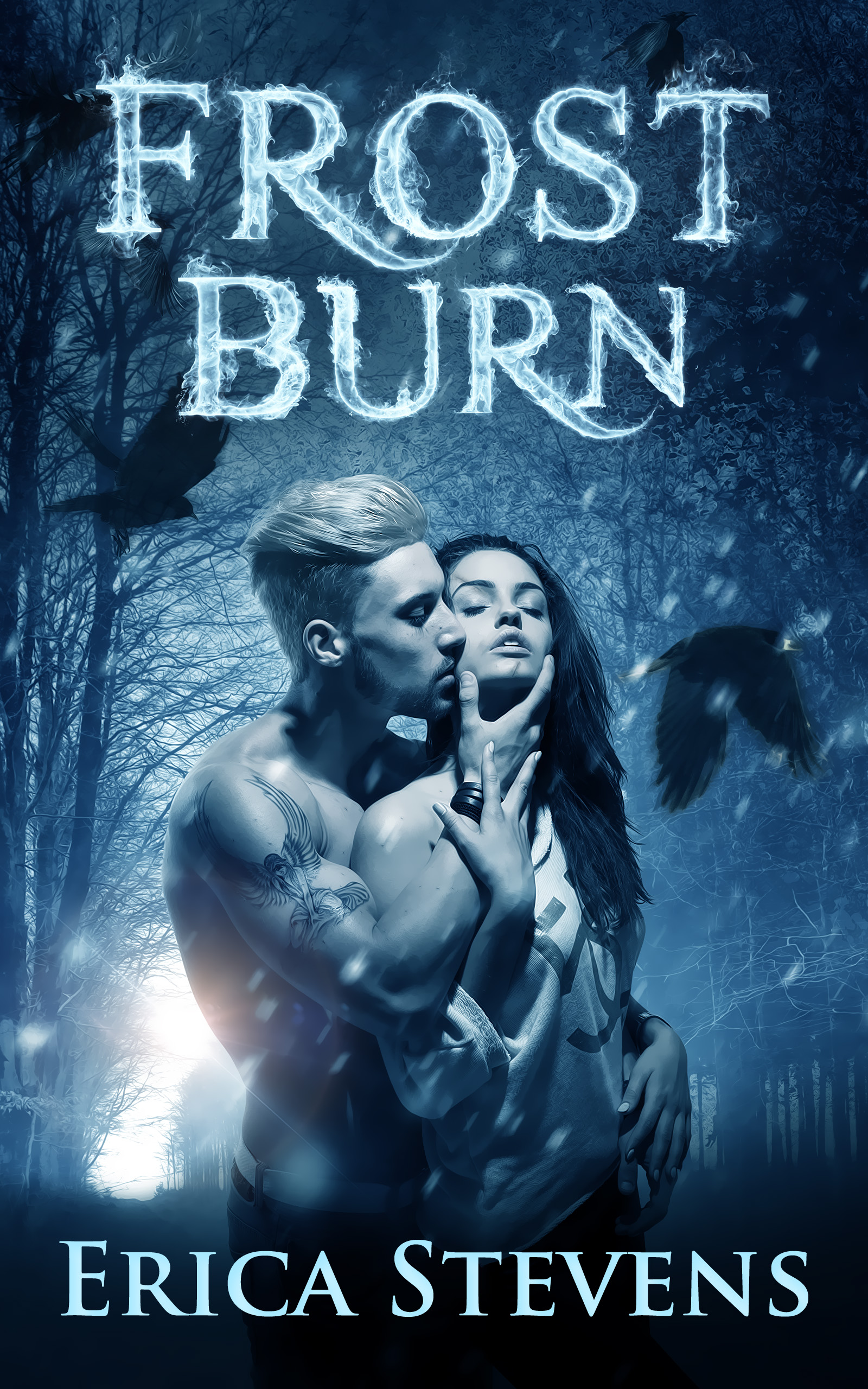 Frost Burn (The Fire and Ice Series, Book 1) (sst-ccx)
