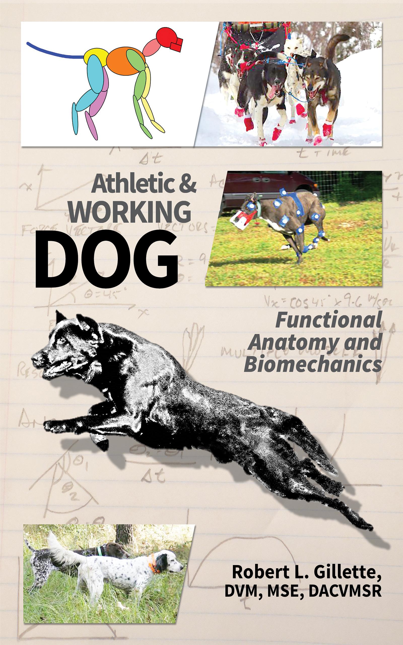 Dog Anatomy Ebook