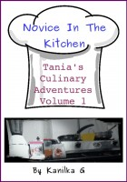 Novice In The Kitchen cover