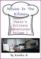 Novice In The Kitchen cover