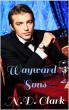 Wayward Sons by N.D. Clark