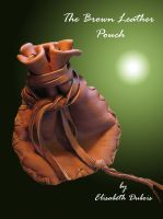 Cover for 'The Brown Leather Pouch'