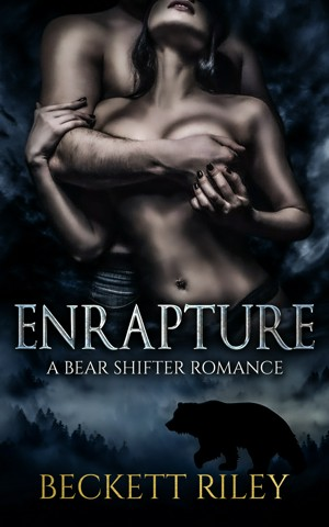 Sexual fantasy fiction