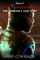 Shad O. Walker - One Warlock's Love Story: That Stormy Knight