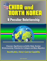 China and North Korea: A Peculiar Relationship - Cheonan, Significance as Buffer