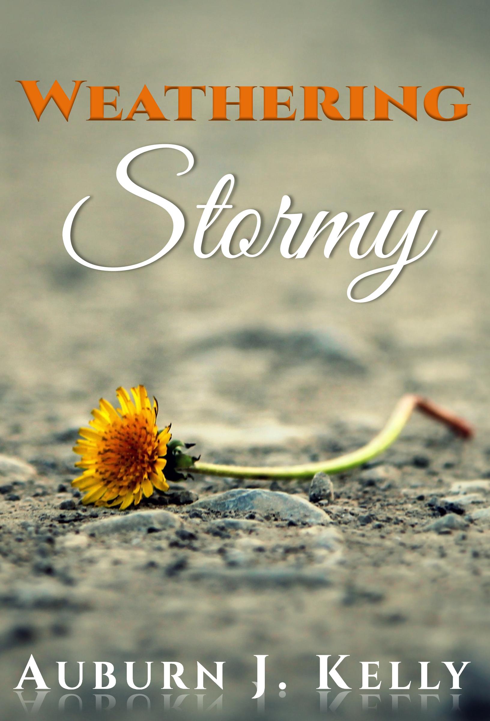 Weathering Stormy By Auburn J Kelly