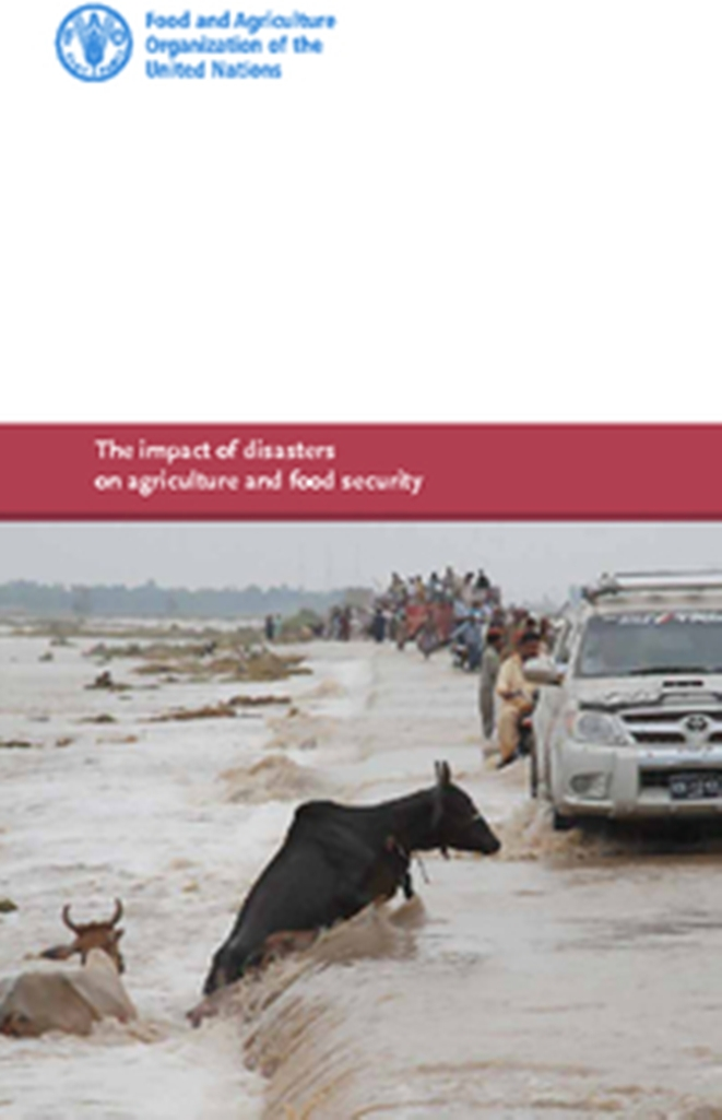 the impact of disasters to the A region's vulnerability to natural disasters depends on multiple factors the united nations university calculates the world risk index using four factors: exposure, susceptibility, coping capacities, and adaptive capacities exposure is the amount of natural hazards an area is exposed to.