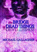 Cover for 'The Bridge of Dead Things (US Edition)'
