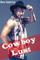 Vera Saint-Luc - The Cowboy Lust Collection (Four Story Gay Cowboy Taboo Incest Erotica Bundle)