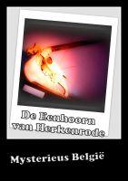 Cover for 'De Eenhoorn van Herkenrode'