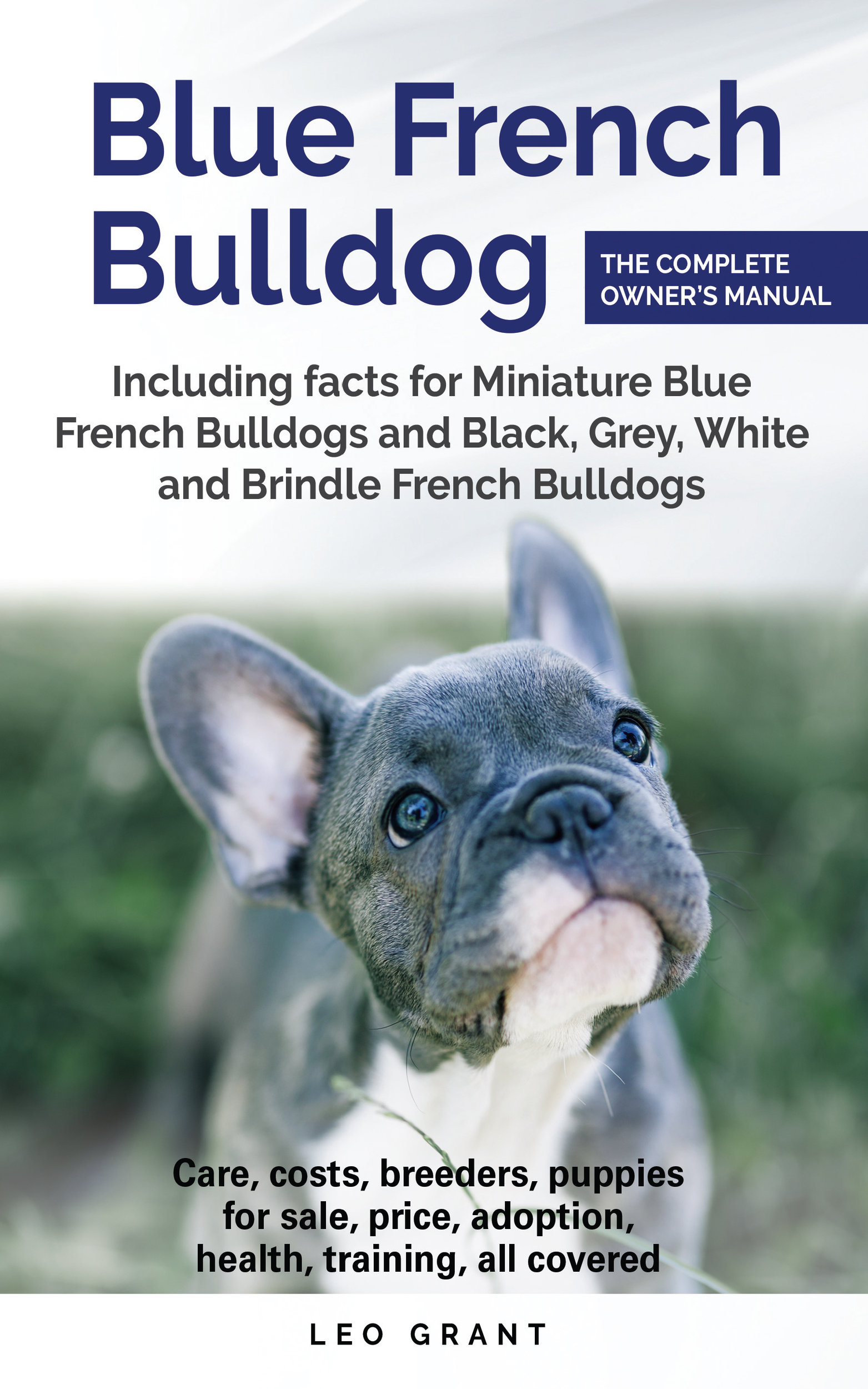 french bulldog book smashwords blue french bulldog a book by leo grant 3293