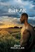 Clean Break by Erin McLellan