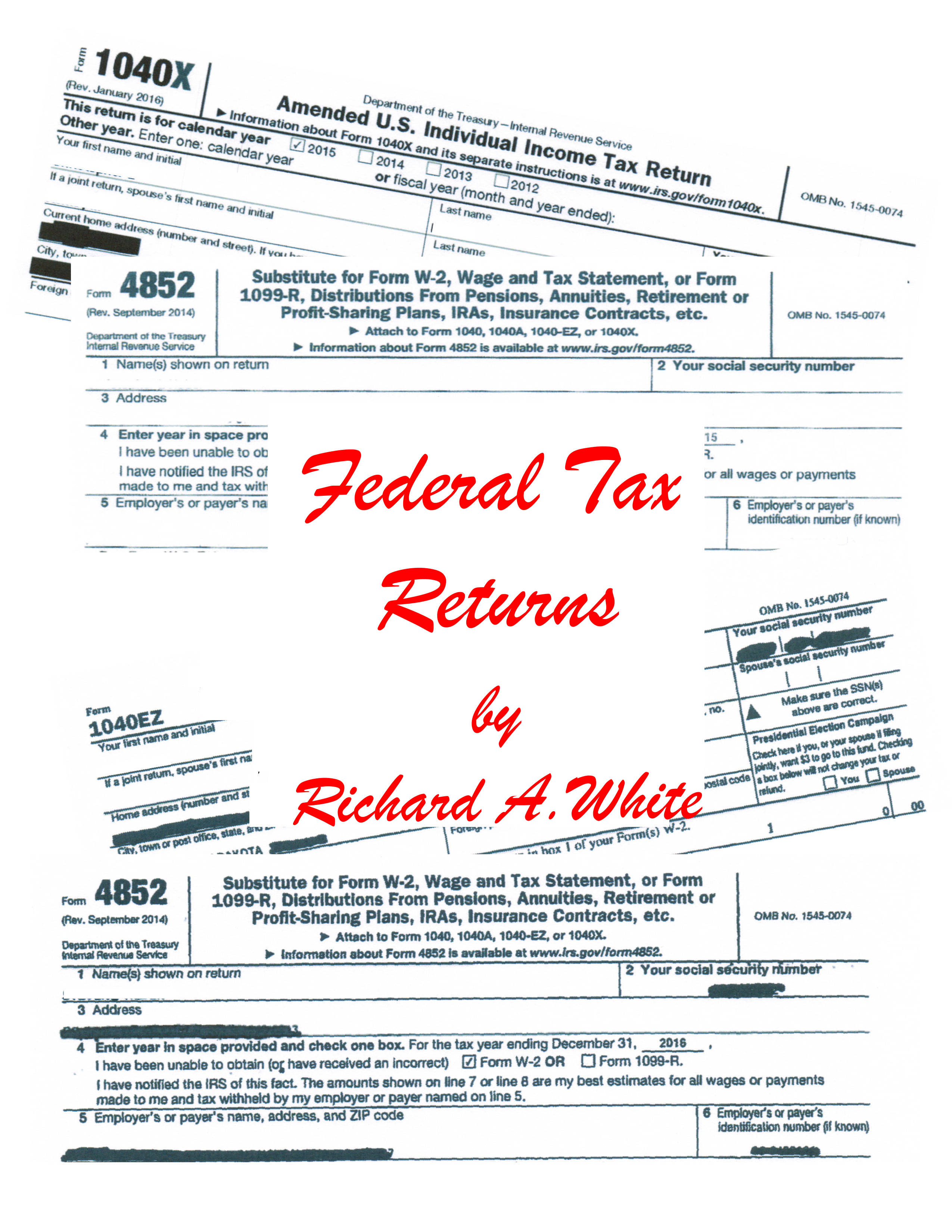 Smashwords Federal Tax Returns A Book By Richard White
