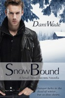 Dani Wade - Snow Bound
