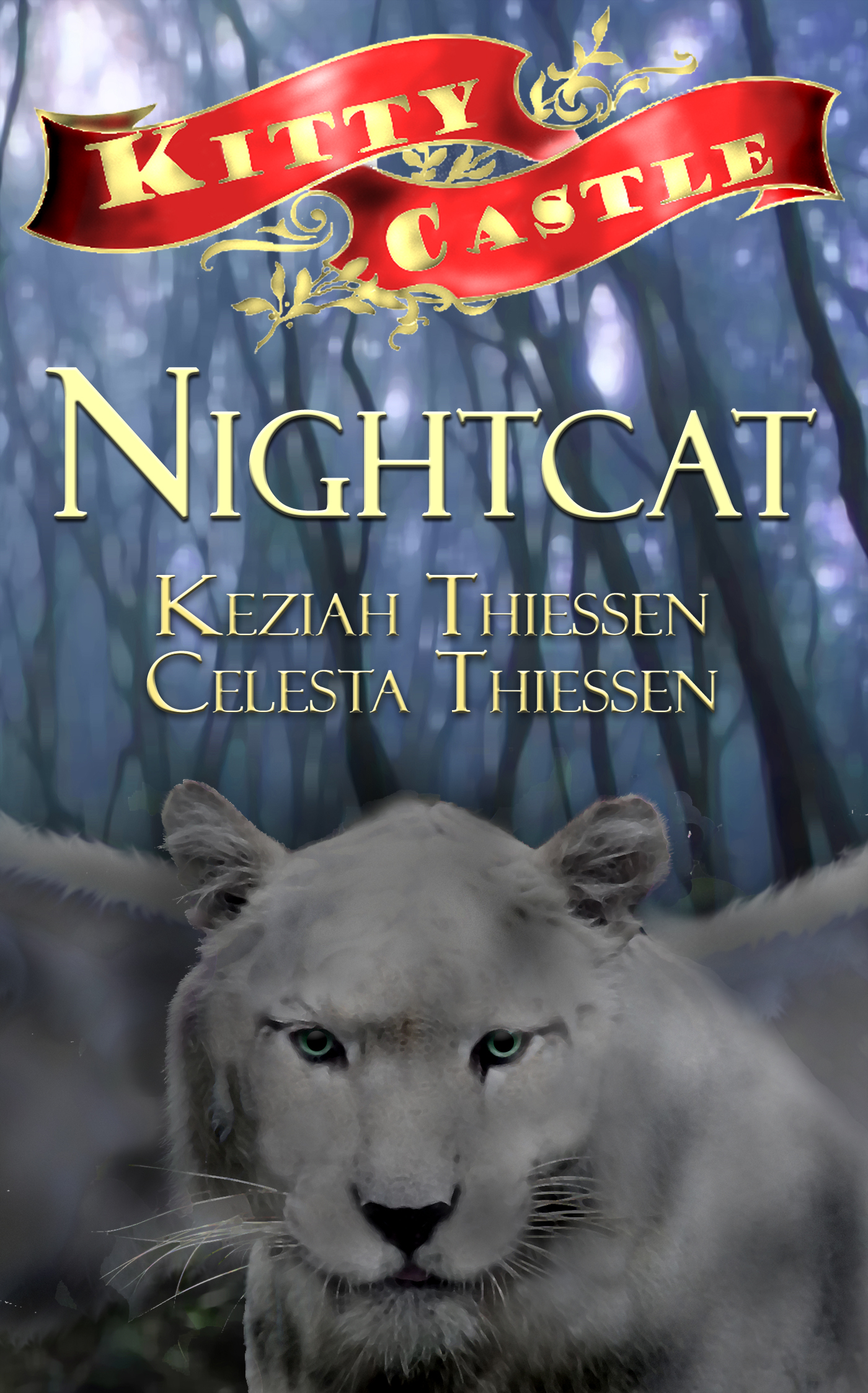 Nightcat (sst-ccclxii)