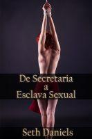 Seth Daniels - De Secretaria a Esclava Sexual: Una Fantasía BDSM