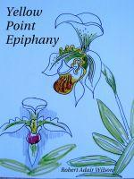 Robert Adair Wilson - Yellow Point Epiphany