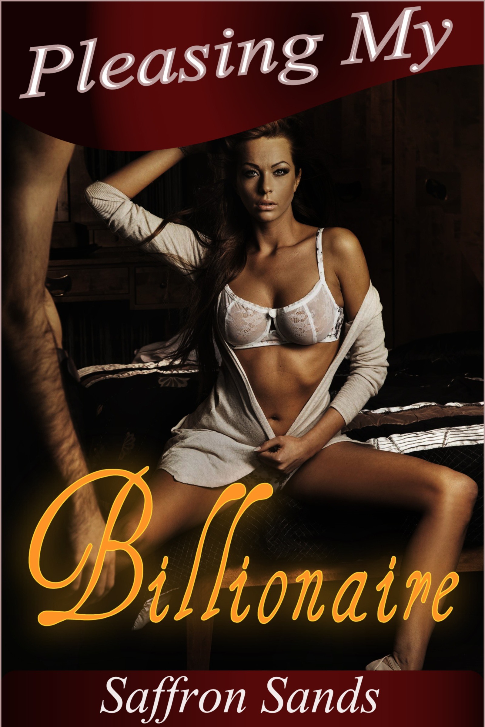 Pleasing My Billionaire (A Romantic BDSM Erotic Short Story)