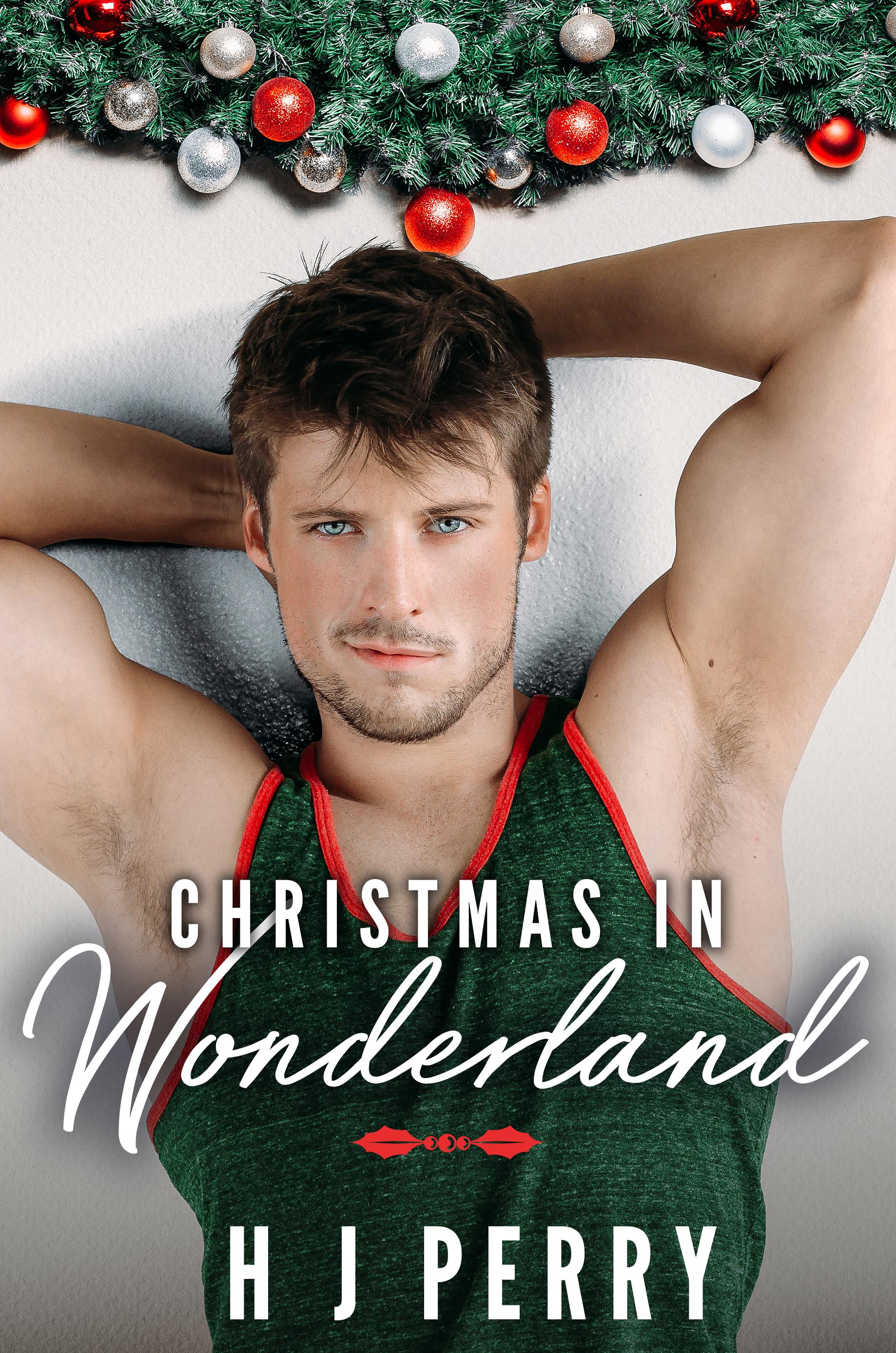 Christmas In Wonderland.Smashwords Christmas In Wonderland A Book By Helen J Perry