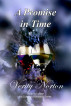 A Promise in Time by Verity Norton