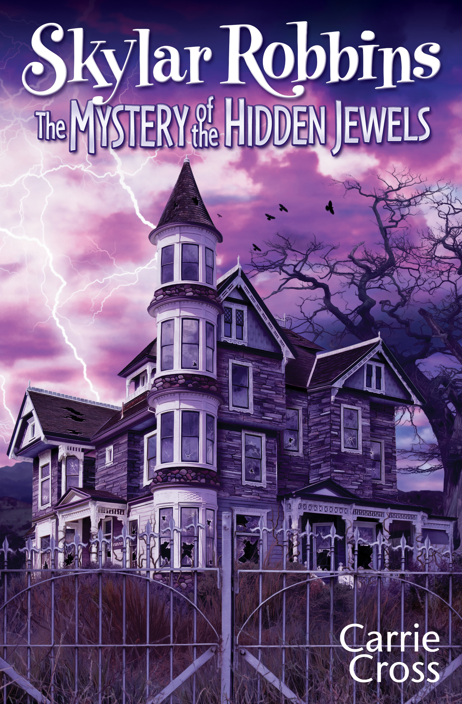 The Mystery of the Hidden Jewels (sst-cdxxvi)