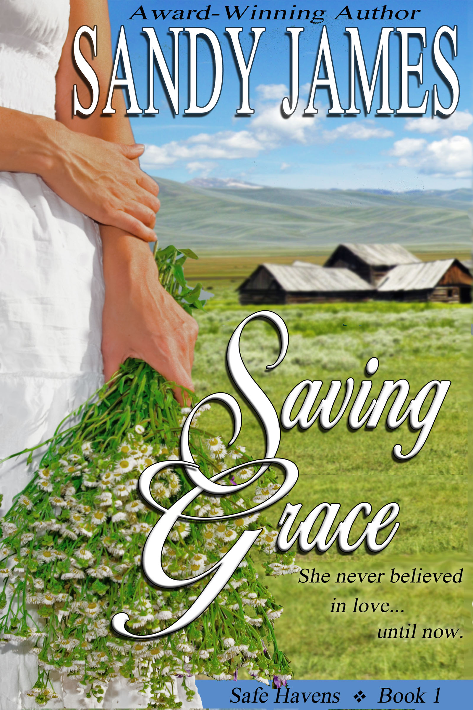 Saving Grace (Safe Havens Book 1) (sst-ccxxv)