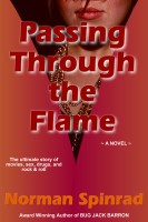 Norman Spinrad - Passing Through the Flame