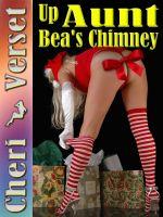 Cheri Verset - Up Aunt Bea's Chimney