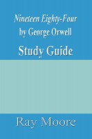 an analysis of the main themes of george orwells novel nineteen eighty four George orwell's nineteen eighty-four rebellion is an important and repeated theme in nineteen eighty-four a critical analysis of george orwell.
