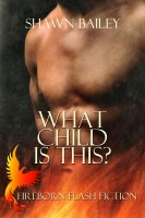 Shawn Bailey - What Child is This?