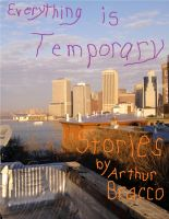 Cover for 'Everything is Temporary'
