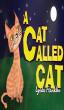 A Cat Called Cat by Lynda Franklin