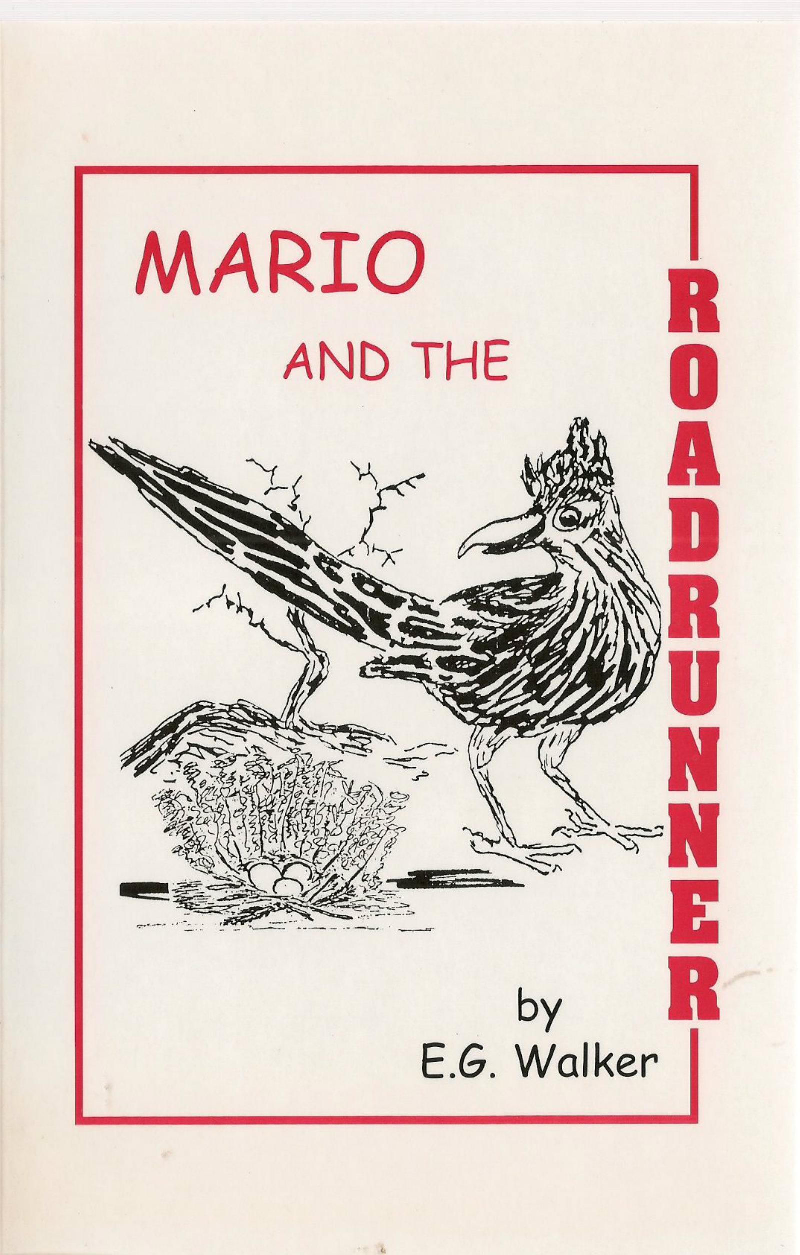 MARIO AND THE MEERKAT (MARIO SERIES FOR CHILDREN Book 1)